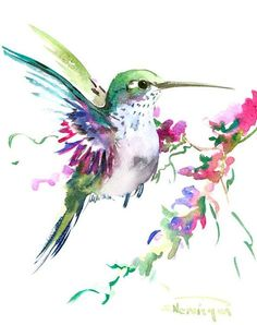 Hummingbird art original watercolor painting 8 X by ORIGINALONLY