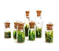 Vivre Moss Terrarium Mini pendentif (1) - Collier charme avec crochet en argent Sterling