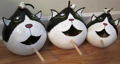 Cat birdhouse gourds