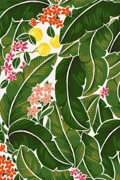 Banana Leaves and Citrus Pattern by Karla Pruitt