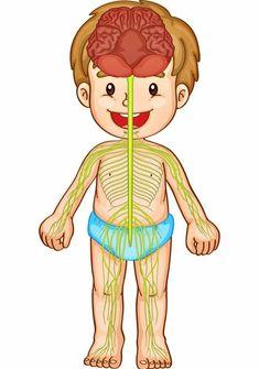 Preschool Lesson Plans, Preschool Worksheets, Preschool Activities, Senses Preschool, Preschool At Home, Montessori, Emotions Game, Body Parts Preschool, Human Body Science