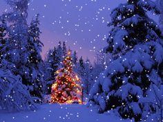 snow scene gifs    聖 誕節不是紀念 聖尼克拉 - Saint Nicolas( 聖誕老人 ...