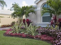 """Colorful bromeliads and agaves adorn this lovely Palm Beach Gardens, Florida tropical landscape designed by Pamela Crawford, who designs landscapes in Palm Beach County. Learn her secrets in her latest book, """"Easy Gardens for South Florida"""" and see over 2000 images of her projects at pamela-crawford.com. Photographed by Allen Rokach."""