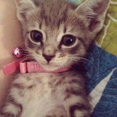My baby :) . Who is still nameless haha