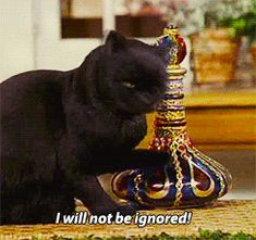 Pin for Later: 39 Salem Saberhagen Quotes You Should Start Using Immediately When Someone Ignores You