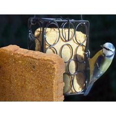 blocs-de-graisse-cacahuetes-graines (2)
