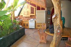 Earthship Biotecture: Hut Kitchen. An indoor garden right off the kitchen and a tree in your house?...of course lol.