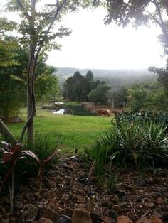 Charlie's Pocket Maleny Situated in Maleny in the Queensland Region, 9 km from Maleny Cheese Factory, Charlie's Pocket boasts views of the mountains and pastoral land from the patio and yards.