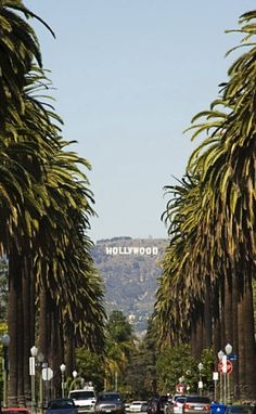 The road to Hollywoo
