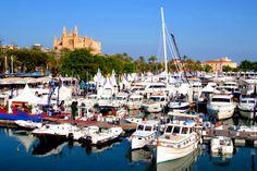 """Internationale Bootsmesse (Palma Boat Show) im Hafen von Palma de Mallorca  An der """"Moll Vell"""" (der alten Mole) vom Hafen von Palma de Mallorca, direkt gegenüber des bekannten Altstadtdviertels ´La Lonja´ findet von kommenden Mittwoch an, den 30.  http://www.inmonova.com/blog/internationale-bootsmesse-palma-boat-show-im-hafen-von-palma-de-mallorca/"""