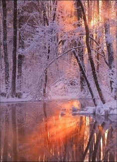 Winter fire and reflection – Rachelle Gobeli – – Photography, Landscape photography, Photography tips Winter Photography, Landscape Photography, Nature Photography, Photography Tips, All Nature, Amazing Nature, Flowers Nature, Winter Pictures, Nature Pictures