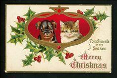 Cat Kitten Puppy Christmas H S V Litho Embossed Vintage  Postcard   eBay