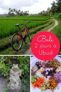 Deux jours à Ubud à Bali (Indonésie): idées d'activités et bonnes adresses
