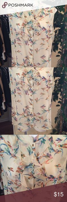 Dressbarn blouse Beautiful hummingbird pattern, on a cream, sheer chiffon base. Will need a cami. Sleeveless, buttons (gold) up the front, & has soft ruffle. By TAHARI-LEVINE CO. Part of dressbarns Jones Studio suit collections. Tag removed, but NEVER worn. Tahari Levine Tops Blouses