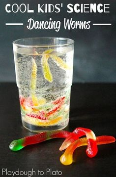 Awesome Kids Science Make Worms Dance! This simple kids' science activity is perfect for little scientists who like seeing creatures come alive before their eyes. This fun kids' science experiment uses baking soda and vinegar to make gummy worms dance. Teaching Science, Science For Kids, Summer Science, Science Ideas, Stem Science, Science Toys, Science Classroom, Science Chemistry, Physical Science