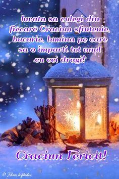 Invață să culegi din fiecare Crăciun sfințenie, bucurie, lumină pe care să o împarți tot anul cu cei dragi!