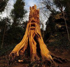 Wood carving man beard