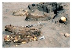 http://www.sott.net/article/281288-Archaeologists-discovered-burial-site-of-unknown-culture-in-Peru