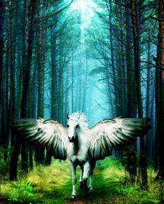 Imágenes de pegasos y unicornios. (33 elementos) | Banco de Imágenes (shared via SlingPic)