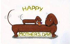 Happy Mother's Day from all of us at RDR! I Love Dogs, Cute Dogs, Dachshund Art, Daschund, Weenie Dogs, Doggies, Delphine, Happy Dogs, Happy Mothers Day