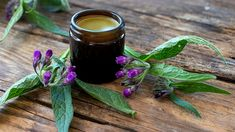 Aromatic Herbs, Medicinal Plants, Comfrey Salve, Leafy Plants, Flowering Plants, Slippery Elm, How To Prevent Cavities, Safe Glass, Flower Spray