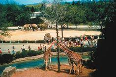 Milwaukee County Zoo, Milwaukee, Wisconsin