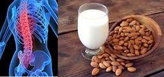 Los frutos secos.   : LOS FRUTOS SECOS Y LA OSTEOPOROSIS