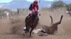 Terrible caída cambió el resultado de una carrera de caballo                                                                                                                                                     Más