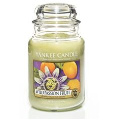 yankee candle | › Gifts › Candles & Lighting › Yankee Candle › Yankee Candle ...