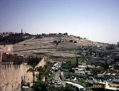 Terra Santa Viagens- Galeria de Imagens - Israel