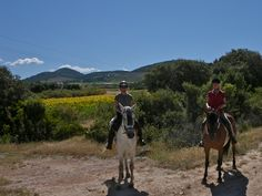 enjoying the hacks on our yoga and horseriding holidays in the hills and sunflowers around Yoga Holidays, Andalucia, Horseback Riding, Horse Riding, Sunflowers, Road Trip, Hacks, Horses, France