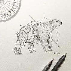 Wild Animal Drawings Lovely Half Geometrical Drawings Of Wild Animals Drawing Wild Animals Drawing, Animal Drawings, Art Drawings, Geometric Drawing, Geometric Shapes, Geometric Animal, Geometric Bear Tattoo, Geometry Tattoo, Tribal Animal Tattoos
