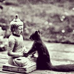 Buddha, I would like to have your wisdom, your serenity, your divine nature, and... your acorn hat! Love, Squirrel