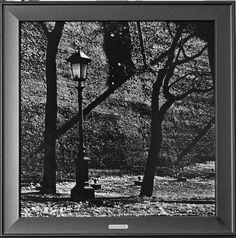 Фото печать на безбликовом стекле 50х50 см. Подложка под изображением сусальное серебро.Автор Константин Муравьев.