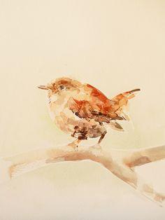 Serie en Acuarela - Aves de Carolina Costa Jungjohann - Artista Chilena