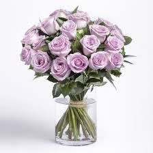 Image result for purple roses photo
