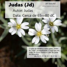 Bíblia Sagrada e seus livros: Judas - Autor e Data (Jd)