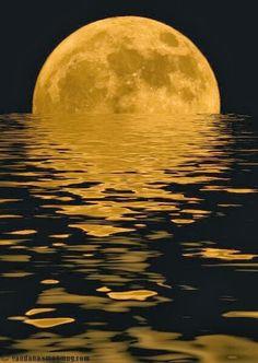 Super Luna llena!!!