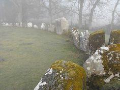 Grange Lios, Stone Circle, Co. Limerick. by The Standing Stone, via Flickr
