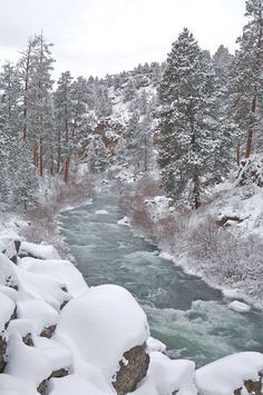Snow covered boulders and ponderosa trees line the Deschutes River