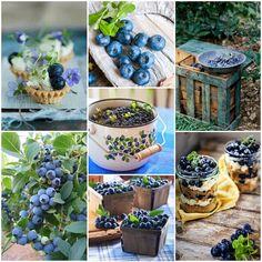 Blueberry Moodboard