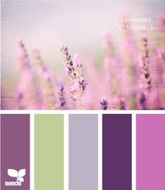 lavender tones...the purples are in my quilt and we are painting our room the green.