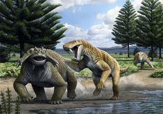 Before dinosaurs ruled the Earth, at the end of the Palaeozoic Era, the land was dominated by the synapsids. The synapsids (the amniote line that includes mammals) were a highly successful group wh…