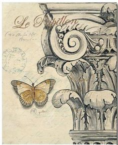 Butterfly and Greek column