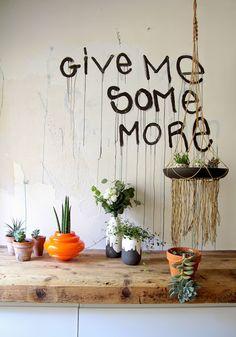 Urban Jungle Bloggers: My Plant Gang by Rekobo