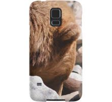 Grizzly Bear on the Rocks Samsung Galaxy Case/Skin