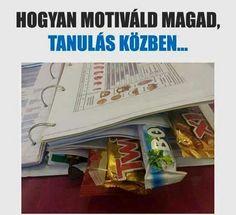 Hogyan motiváld magad tanulás közben