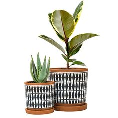 Set Of 2 Geometric Seamless Design Terracotta Planter Pot 4 Inch And 6 Inch Ceramic Plant Pot Wi In 2020 Ceramic Plant Pots Decorated Flower Pots Terracotta Planter