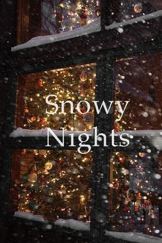 .snowy night #snow #christmas #lights