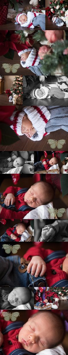 Guelph Lifestyle Newborn Photography | Christmas Cherub » Guelph Lifestyle Photographer: Wedding, Newborn, Family, Dance